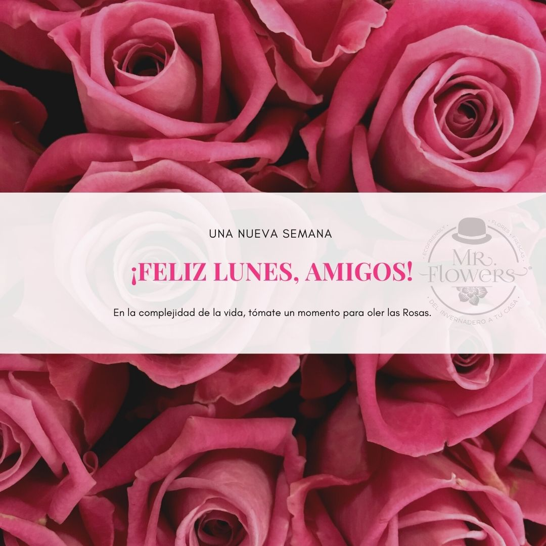 Pink Retro Filtered Flowers Instagram Post