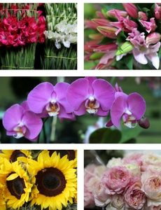 Flower Shop Online flores