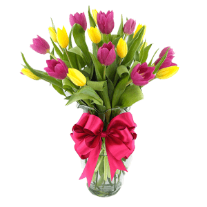 Arreglo Floral con 20 Tulipanes Mixtos