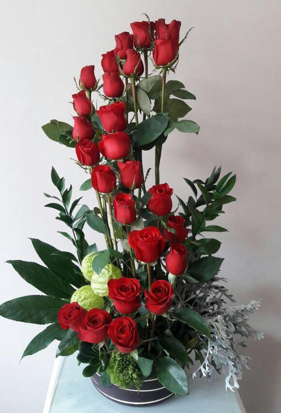 24 Rosas S