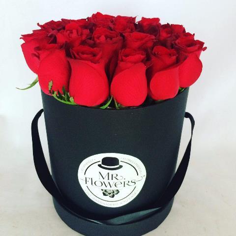 Caja con 24 Rosas Rojas