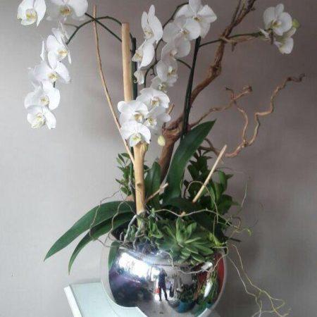 Arreglo Floral Para Hombre