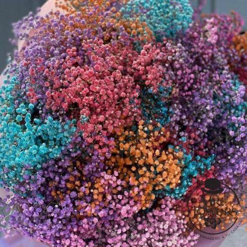 Ramo de Gypso de Colores 3